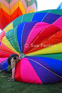 Plainville-Balloons 170-B Text