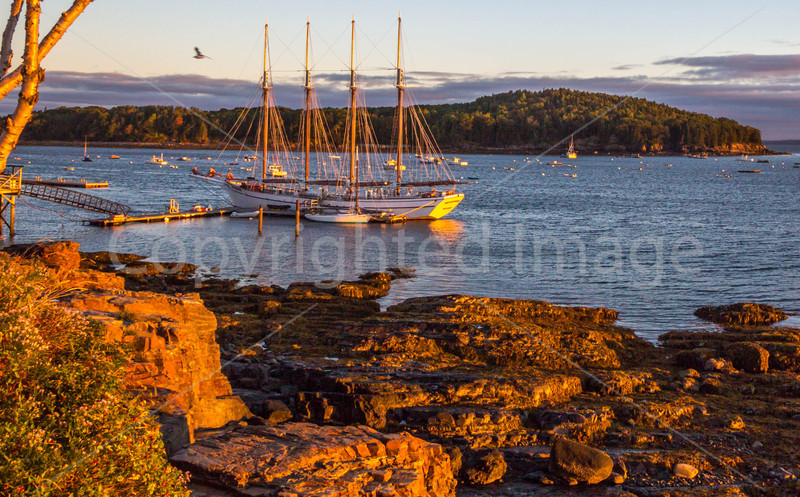 Maine - Acadia - Sojourn - D2-C2-0025 - 72 ppi-3