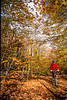 Biker in New Hampshire's White Mountain National Forest, on trail road off Kancamagus Hwy - 12 - 72 ppi