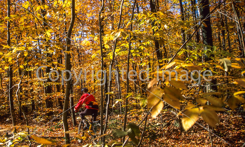 Biker in New Hampshire's White Mountain National Forest, on trail road off Kancamagus Hwy - 6 - 72 ppi-2