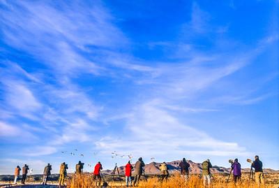 Photographers at Bosque del Apache Nat'l Wildlife Refuge, NM - 3 - 72 ppi