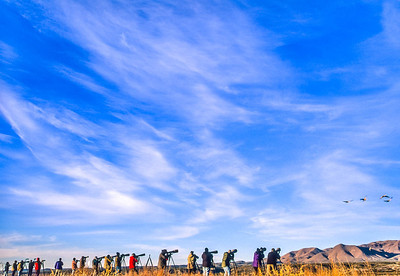 Photographers at Bosque del Apache Nat'l Wildlife Refuge, NM - 2 - 72 ppi