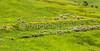 TransAm 2015 - Dillon to Hot Sulphur Springs, Colorado - C1-0404 - 72 ppi