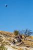 Cappadocia, Turkey - C3 _D5A0449 - 72 ppi-2