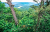 View of Boston Mountains from overlook south of Harrison, Arkansas - 1 - 72 ppi
