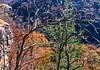 Biker at Hawksbill Crag, northwest Arkansas, Upper Buffalo Wilderness Area, after 1 5-mile hike in from gravel road - 20 - 72 ppi