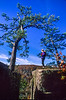 Cyclist on 1 5-mile hike to Hawksbill Crag in Upper Buffalo Wilderness Area - 8 - 72 ppi