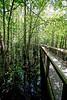 Louisiana Purchase Hitoric State Park, Arkansas