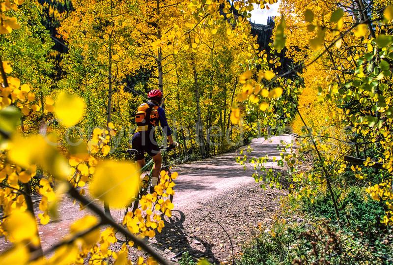 Mountain biker on Colorado's Alpine Loop - Lake City to Engineer Pass in San Juan Mts  - 38 - 72 ppi