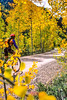 Mountain biker on Colorado's Alpine Loop - Lake City to Engineer Pass in San Juan Mts  - 13 - 72 ppi