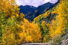 Mountain biker on Colorado's Alpine Loop - Lake City to Engineer Pass in San Juan Mts  - 15 - 72 ppi