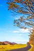 TransAm & Bike Route 76 riders on Blue Ridge Parkway near Reeds Gap, VA - C3-0284- - 300 ppi