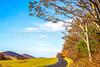 TransAm & Bike Route 76 riders on Blue Ridge Parkway near Reeds Gap, VA - C3-0282- - 72 ppi