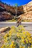 Thin-tire cyclist in Colorado Nat'l Monument, CO - 36 - 72 ppi