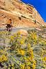 Thin-tire cyclist in Colorado Nat'l Monument, CO - 13 - 72 ppi