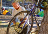 ACA - Cyclists and staff in camp in Bisbee, Arizona - D6-C1-0091 - 72 ppi-2