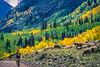 Mountain biker on Colorado's Alpine Loop - Lake City to Engineer Pass in San Juan Mts  - 6 - 72 ppi
