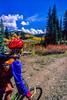 Mountain biker on trail near Lake City in Colorado's San Juan Mountains - 1 - 72 ppi