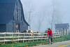 Biker on morning workout ride near Kentucky River between  Richmond & Lexington, KY - 9 - 72 ppi