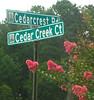 Cedar Crest Plantation-Acworth-Paulding County (2)