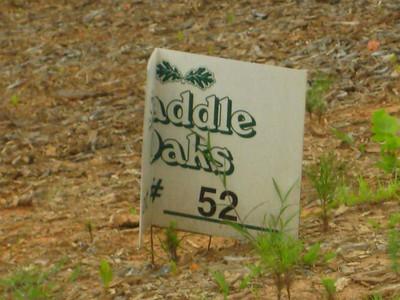 Saddle Oaks-Acworth Neighborhood (1)
