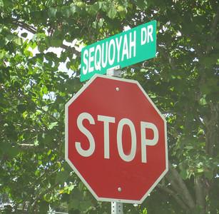 Sequoyah Woods Alpharetta Georgia (15)