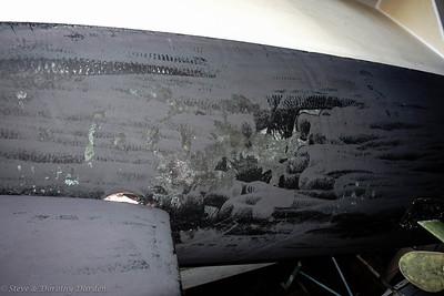 Antifoul bottom paint failure