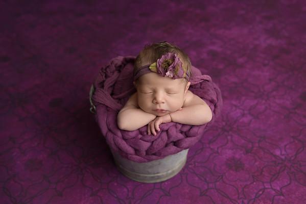 Adalynn •Newborn