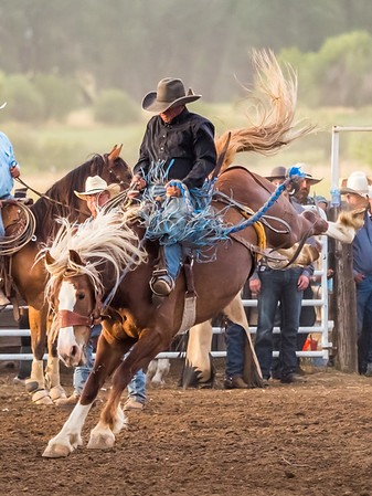 Adams County Rodeo 2019 (22)