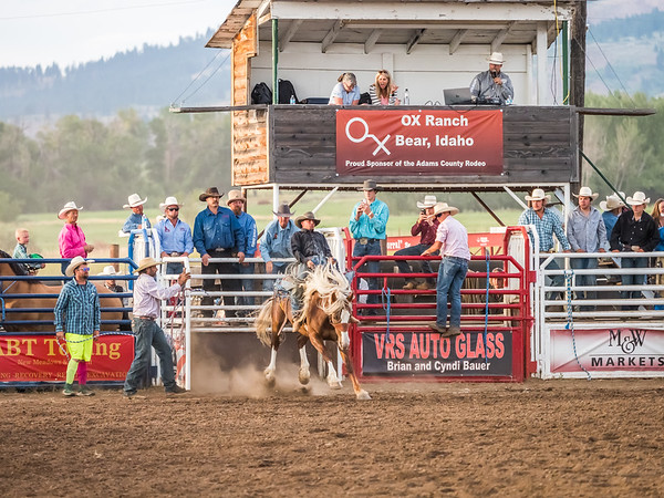 Adams County Rodeo 2019 (21)