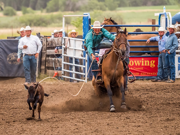 Adams County Rodeo 2019 (16)