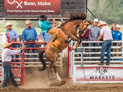Adams County Rodeo 2019 (20)