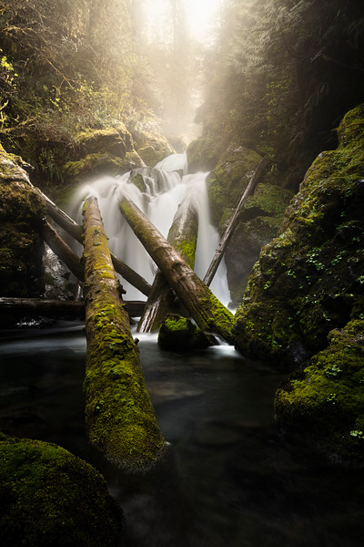 Hidden falls of Quinault