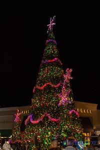 christmas-2013-012