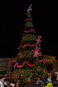 christmas-2013-011