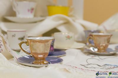 ecopia-tea-party-009
