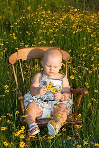 kadence-wild-flowers-4