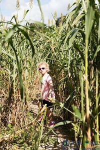 kadence-damian-farm-0034