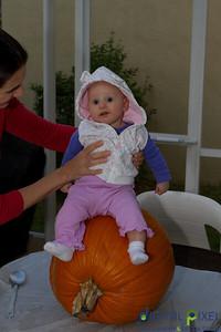 kadence_pumpkin-0036