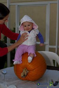 kadence_pumpkin-0038
