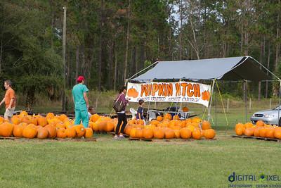 kadence_pumpkin-0027
