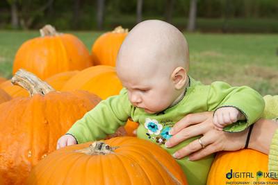 kadence_pumpkin-0022
