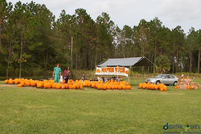 kadence_pumpkin-0026