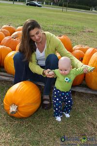 kadence_pumpkin-0006