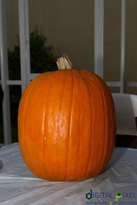 kadence_pumpkin-0030