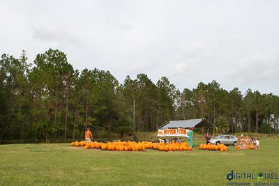 kadence_pumpkin-0028