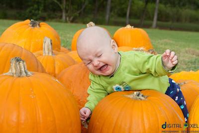 kadence_pumpkin-0020