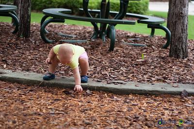 kadence-playground-37