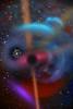 Cosmos XVIII-EL TRUT S