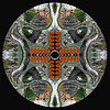 Mandala III: NATURE OF SPIRIT 4